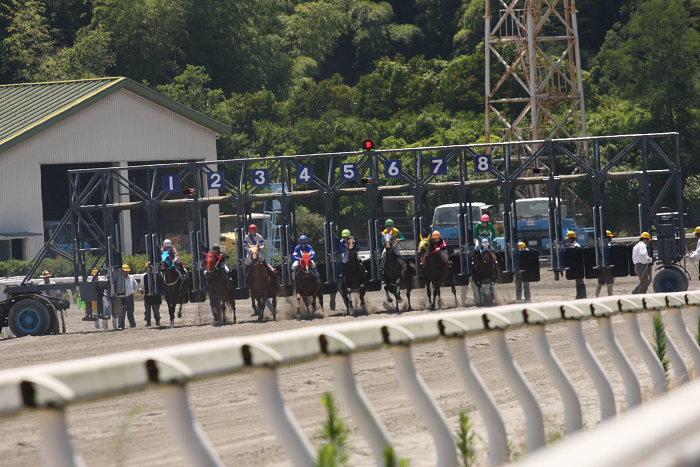 2008年7月20日(日) 高知競馬 4R_a0077663_20331119.jpg