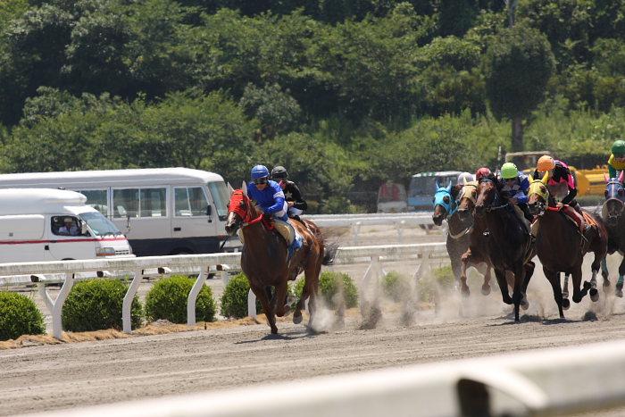 2008年7月20日(日) 高知競馬 4R_a0077663_20333077.jpg