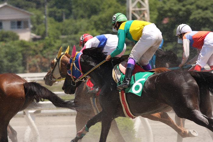 2008年7月20日(日) 高知競馬 4R_a0077663_20334466.jpg