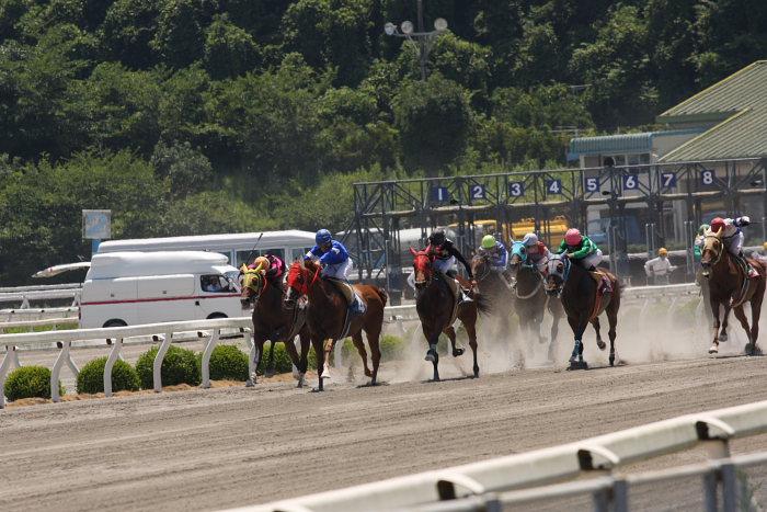 2008年7月20日(日) 高知競馬 4R_a0077663_20335510.jpg