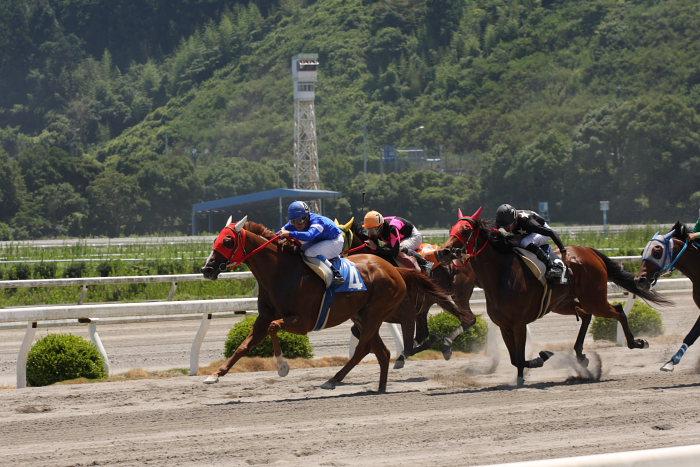 2008年7月20日(日) 高知競馬 4R_a0077663_2034623.jpg