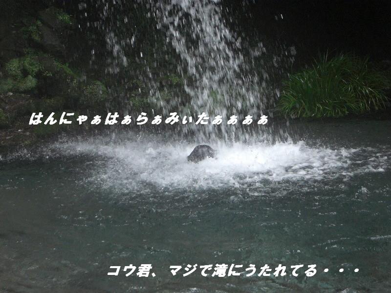 d0116574_20463691.jpg