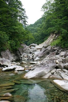 ちょっと荘川に行ってきましたⅦ_f0166390_20111488.jpg