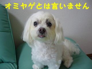 f0145192_16525112.jpg