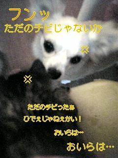 f0148927_1041688.jpg