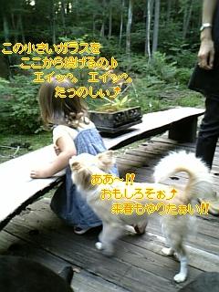 お友達_f0148927_1952553.jpg