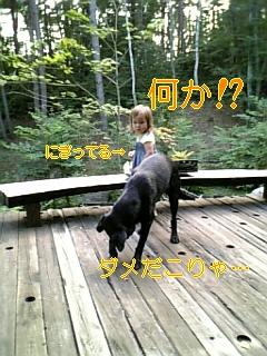 お友達_f0148927_1982290.jpg