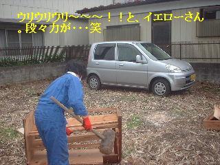 f0031037_20285360.jpg
