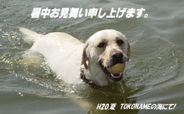 b0136683_15553797.jpg