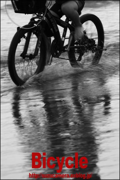 Bicycle_f0100215_1105119.jpg
