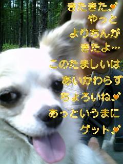 f0148927_16335369.jpg