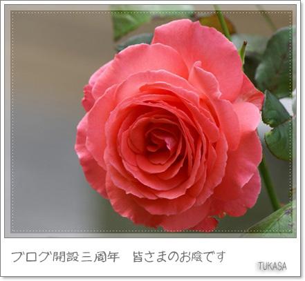 e0040092_0525551.jpg