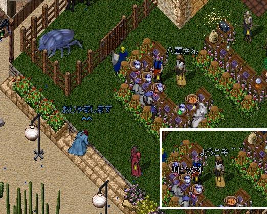秘密の花園_e0068900_19264534.jpg