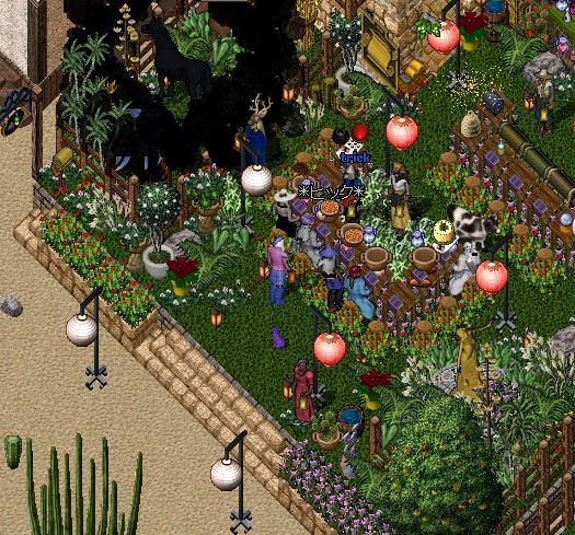 秘密の花園_e0068900_21513692.jpg