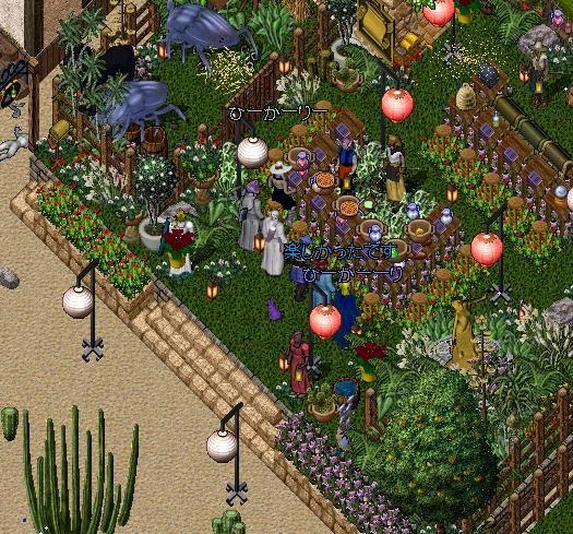 秘密の花園_e0068900_2221429.jpg
