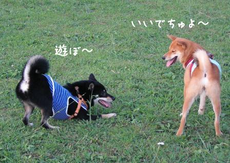 f0068501_2272766.jpg