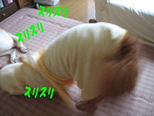 b0008217_14202112.jpg
