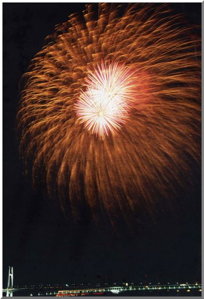 夜空に咲く大輪(横浜MM21)_d0123528_19364494.jpg