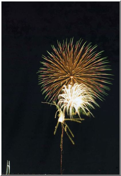 夜空に咲く大輪(横浜MM21)_d0123528_19523153.jpg