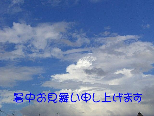 e0011787_10383131.jpg