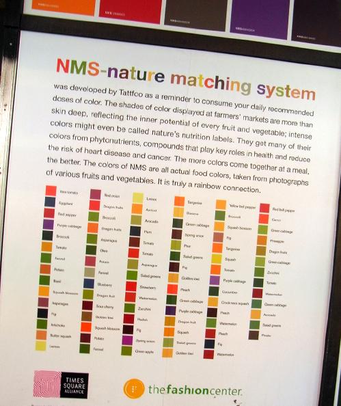 巨大化したカラフル・タイル・アート Nature Matching System_b0007805_12354938.jpg