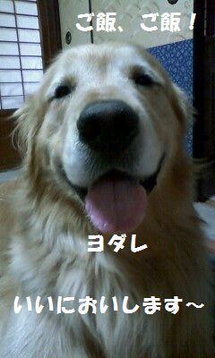 b0127531_17583474.jpg