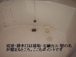 f0031037_21273840.jpg