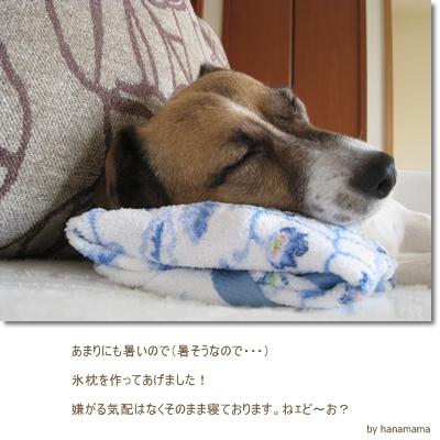 f0134756_1635465.jpg
