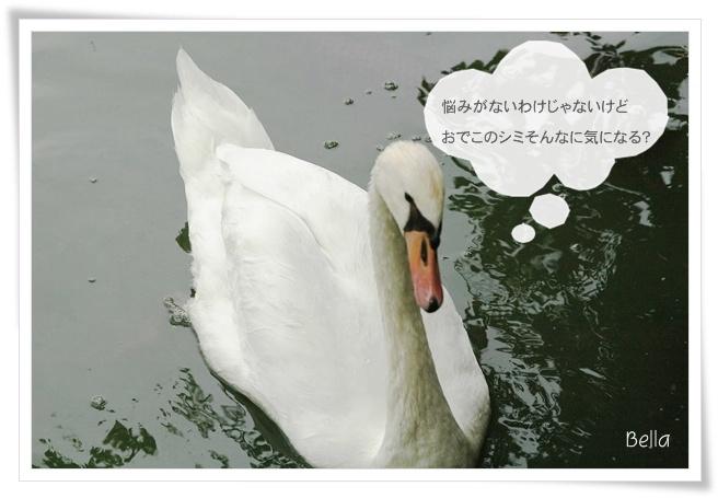 f0012718_2393894.jpg