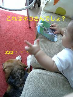 b0104420_23384387.jpg