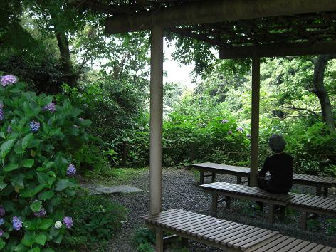 Zuisenji Temple ~  瑞泉寺_c0079828_951711.jpg