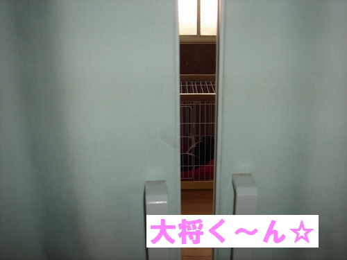 b0149736_1933980.jpg