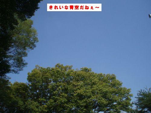 b0148945_1755422.jpg