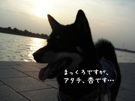 f0068501_14104873.jpg