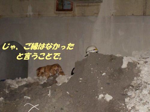 b0067012_124649.jpg