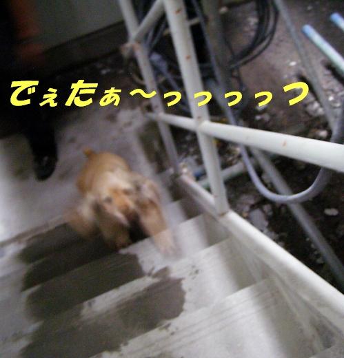 b0067012_234264.jpg