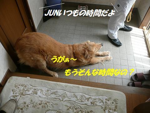 f0114128_847489.jpg