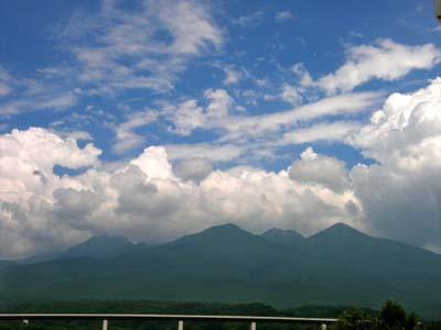 動くシメジ & 富士見高原ユリの里_d0127634_14432764.jpg