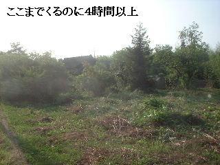 f0031037_20402242.jpg