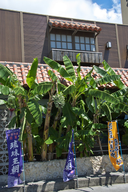f0132946_1531121.jpg