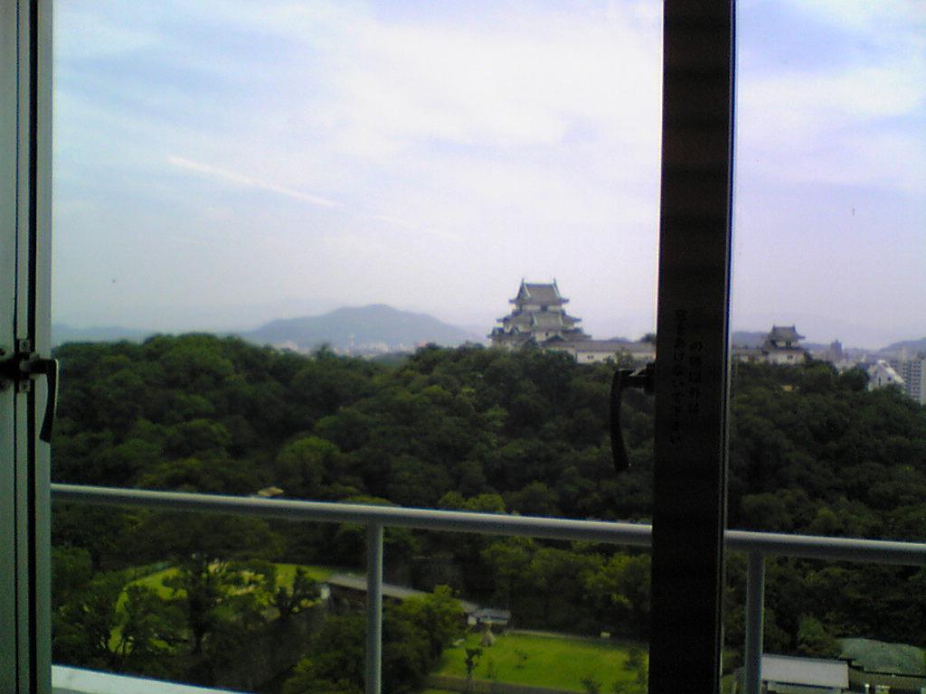 和歌山の城_d0061857_1571342.jpg