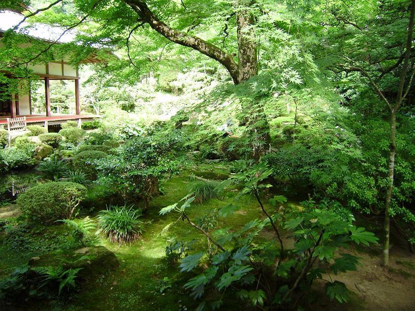 京都大原_c0167560_1562187.jpg