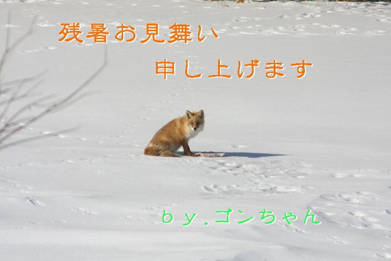 f0118293_21244111.jpg