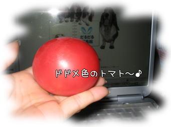 b0043912_8543261.jpg