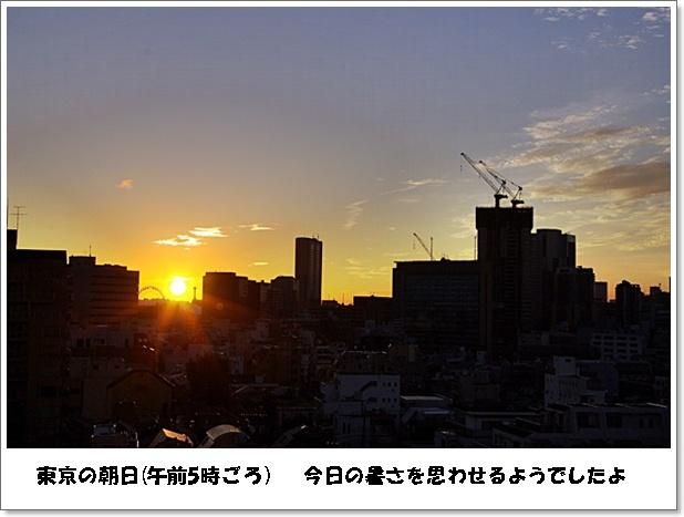 b0019313_2012970.jpg