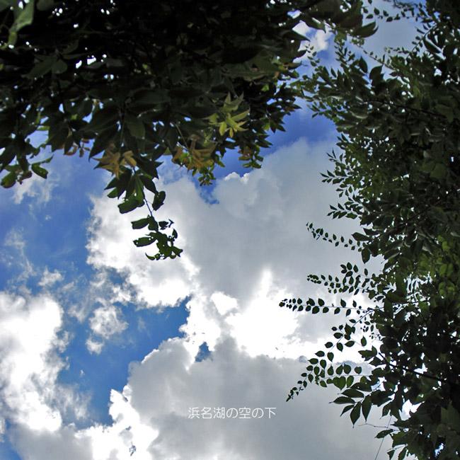 f0099834_20135238.jpg