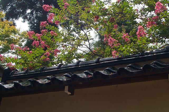 芭蕉と歩く下口街道~金沢散歩学_d0043136_18575192.jpg