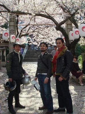 2008年 桜の季節ごろ_f0164058_10533489.jpg