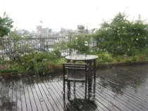 雷雨_d0037159_14555984.jpg
