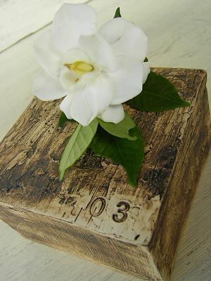 b0073970_20104341.jpg